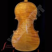 Violine_Paul_Knorr_1_Rueck_WZ_Verkauft
